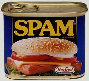 spam comments, Holy Cow! Spam Comments Crashed My Website, MySMARTblog, MySMARTblog